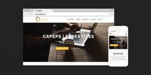 CAPEPS.eu est en ligne